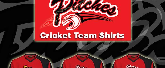 cricket-team-logo